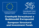 European Maritime and Fisheries Fund